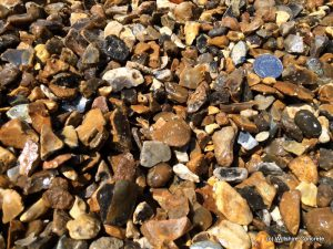 Romsey Shingle/Golden Flint
